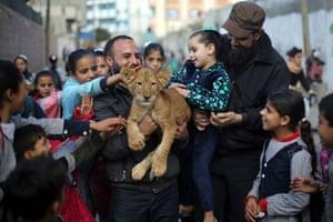 Gaza, Palestine. A man takes a lion cub to visit children in Rafah refugee camp