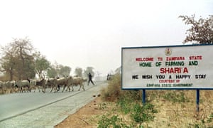 Cattle crossing the road near a sign that welcomes visits to Zamfara state