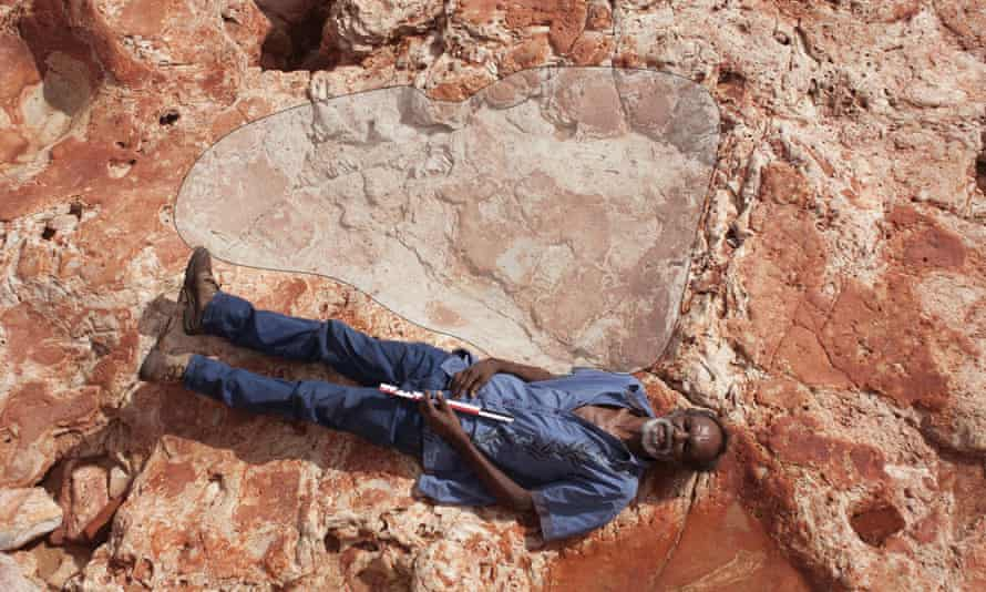 The prints indicate enormous animals that were probably around 5.3 to 5.5 metres at the hip.