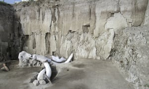 Mammoth bones lie at the excavation site in Tultepec, just north of Mexico City.