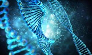 A high-resolution 3D render of a human DNA string