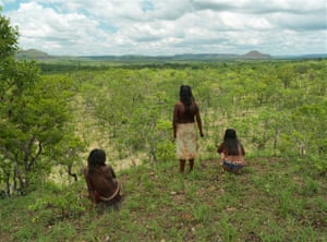 Approximately 300,000 hectares of the Cerrado is the protected territory of the Kraho people. The area is too large for complete surveillance and it is feared that remote portions are already being violated.