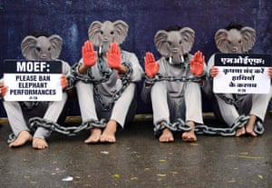 Indian volunteers for animal rights group Peta during a protest against the use of elephants as entertainment New Delhi, India