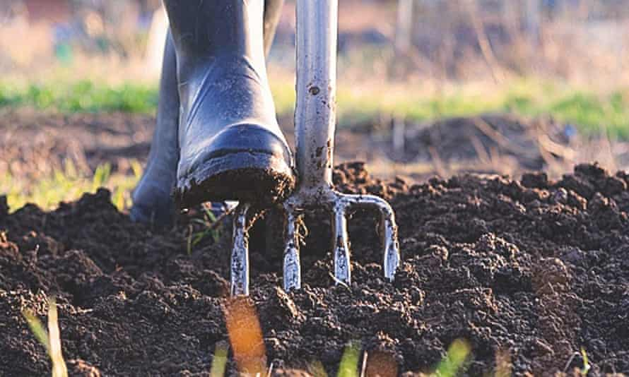 A person gardening, digging earth with a fork