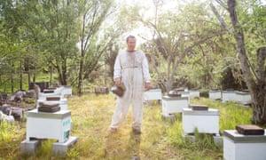 David Yanke, Dakel Apiaries, with his hives