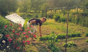 Wwoof farm in Norway
