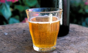 A glass of freshly brewed cider