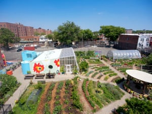 Edible Schoolyard – up and running in several locations in the US