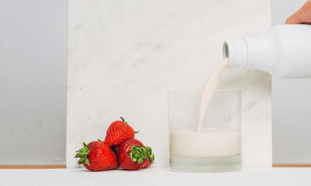 A glass of the Soylent drink. Sadly, these delicious strawberries were not served at the food-free dinner party.