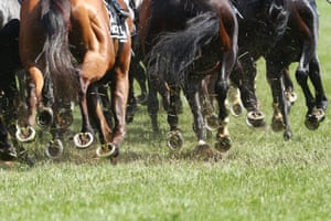 Horses on the first lap in race seven