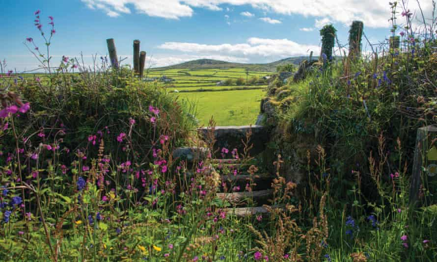 A Cornish hedge and stile in Trevalgan Hill, Cornwall.