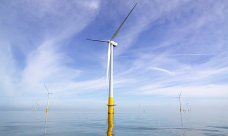 Nuclear plans 'should be rethought after fall in offshore windfarm costs'
