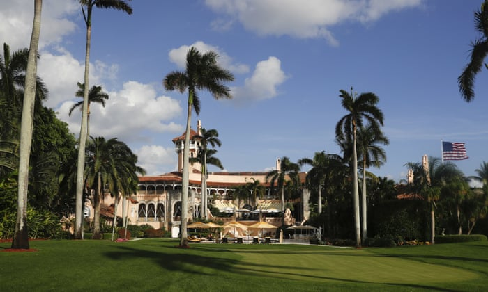 Trumps Paradise How MaraLago Became A Presidential Playground - Local authorities cut down this mans 30 year old tree and his revenge is genius