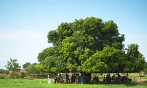 Out of the heat ... villagers gather beneath the mango tree in Torem, Burkina Faso.