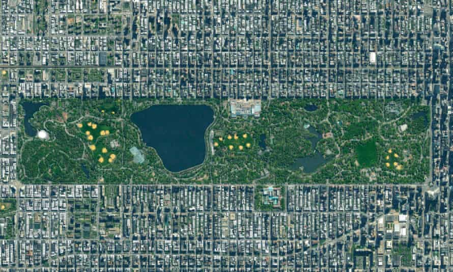 Central Park stands out in green at the heart of Manhattan but 600,000 trees are to be found spread across all five of New York's five boroughs.