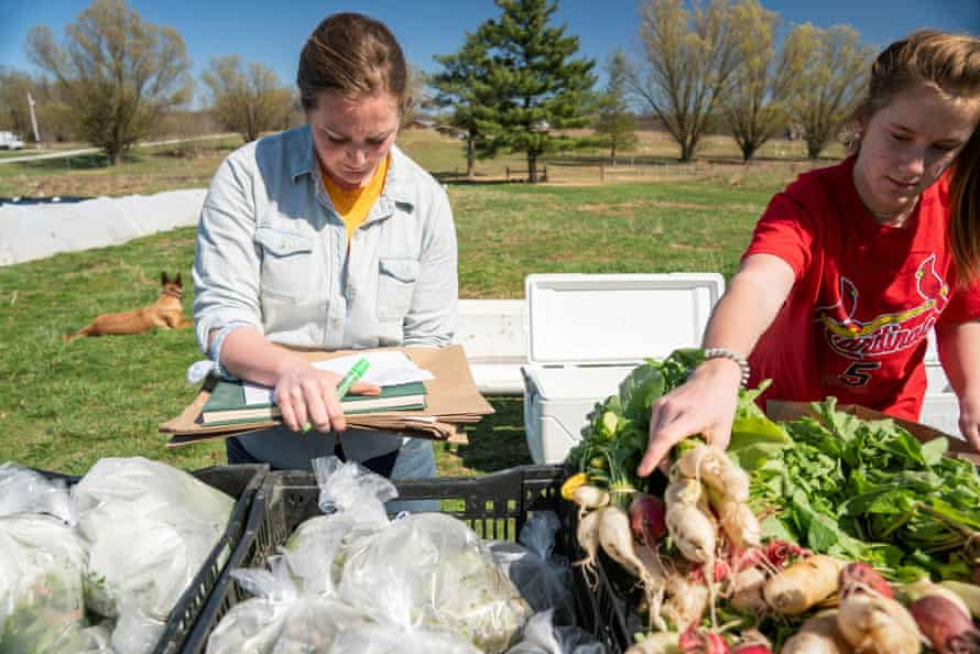 Casondra Myers and Ellen Henslee pack produce delivery boxes at Front 9 Farm.
