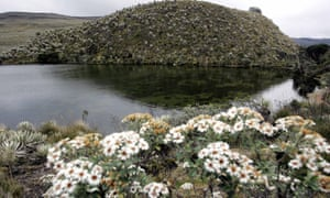 The Sumapaz paramo in Colombia - one of numerous paramos declared off-limits to oil, gas and mining operations by the country's Constitutional Court.