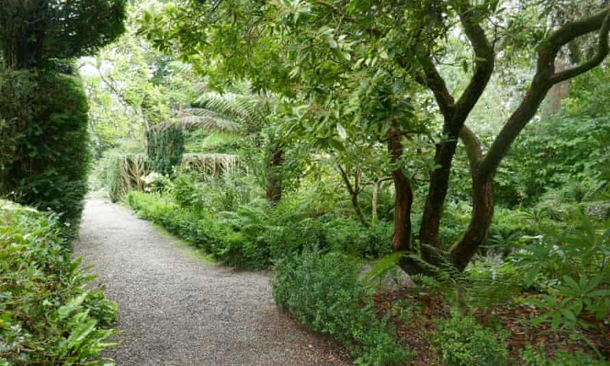 The garden at Plas yn Rhiw