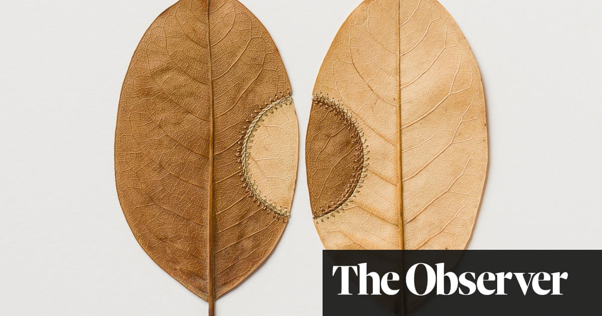 Leaves become intricate crochet art – in pictures