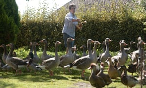 Dominique Douthe takes care of her ducks and geese in the French town of Soustons. A court will hear her neighbour's noise complaint on Tuesday.
