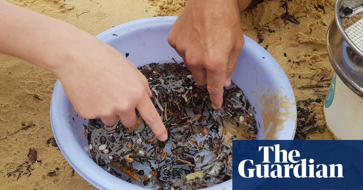 Scientists find way to remove polluting microplastics with bacteria