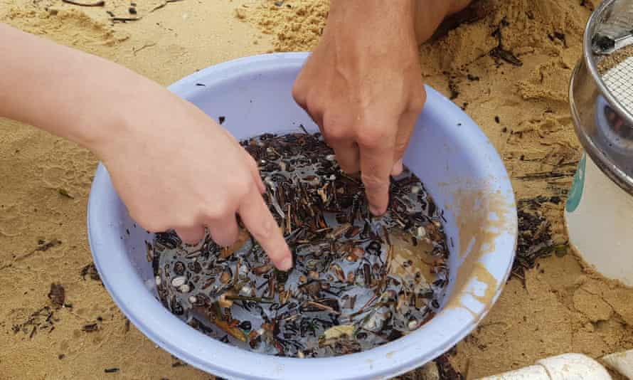 Microplastics and organic matter float in water inside a container at Manly Cove Beach in Sydney, Australia.