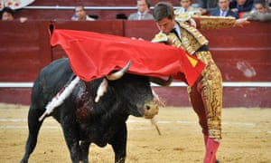 Bullfighting is permitted in just eight countries around the world.