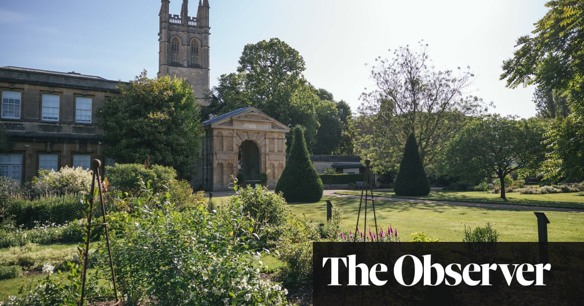 Roses out, olives in: the new English garden in a time of climate crisis