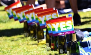 'There are millions and millions of multicultural Australians who voted yes – my queer friends, myself, my mum, my grandmother'