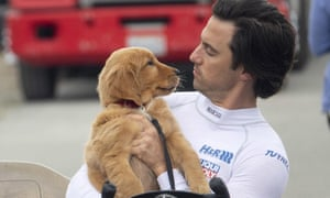 Canine stoicism … The Art of Racing in the Rain, with Kevin Costner voicing the role of a golden retriever and Milo Ventimiglia.