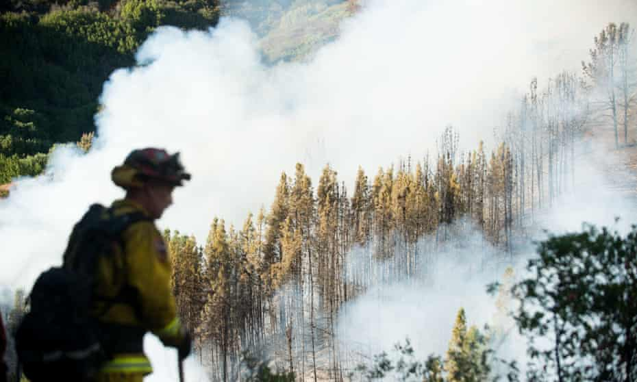 A firefighter watches as smoke from a wildfire swirls around a stand of trees near Morgan Hill, Calif., on Tuesday, Sept. 27, 2016. A heat wave stifling drought-stricken California worsened the state's wildfires in 2016.