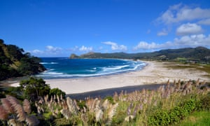 Surf and sand dunes at Medlands Beach, Great Barrier Island.