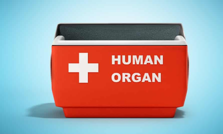 open human organ refrigerator box,  red with white writing, against blue background