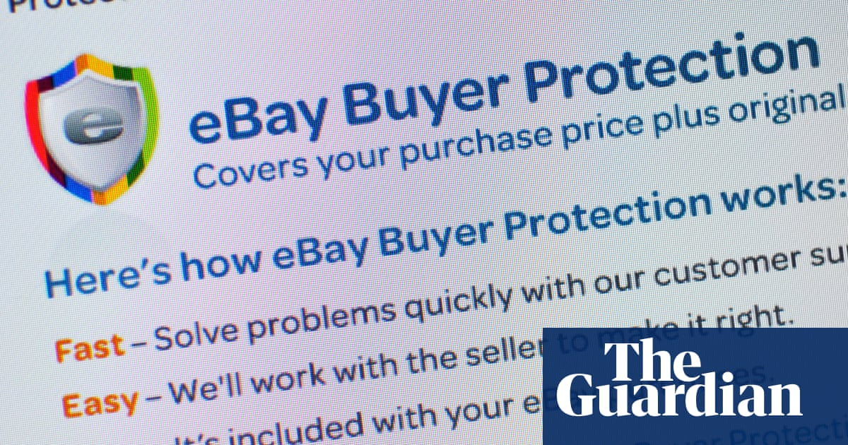 I Could Prove I Had Been Scammed But Ebay Wasn T On My Side Money The Guardian