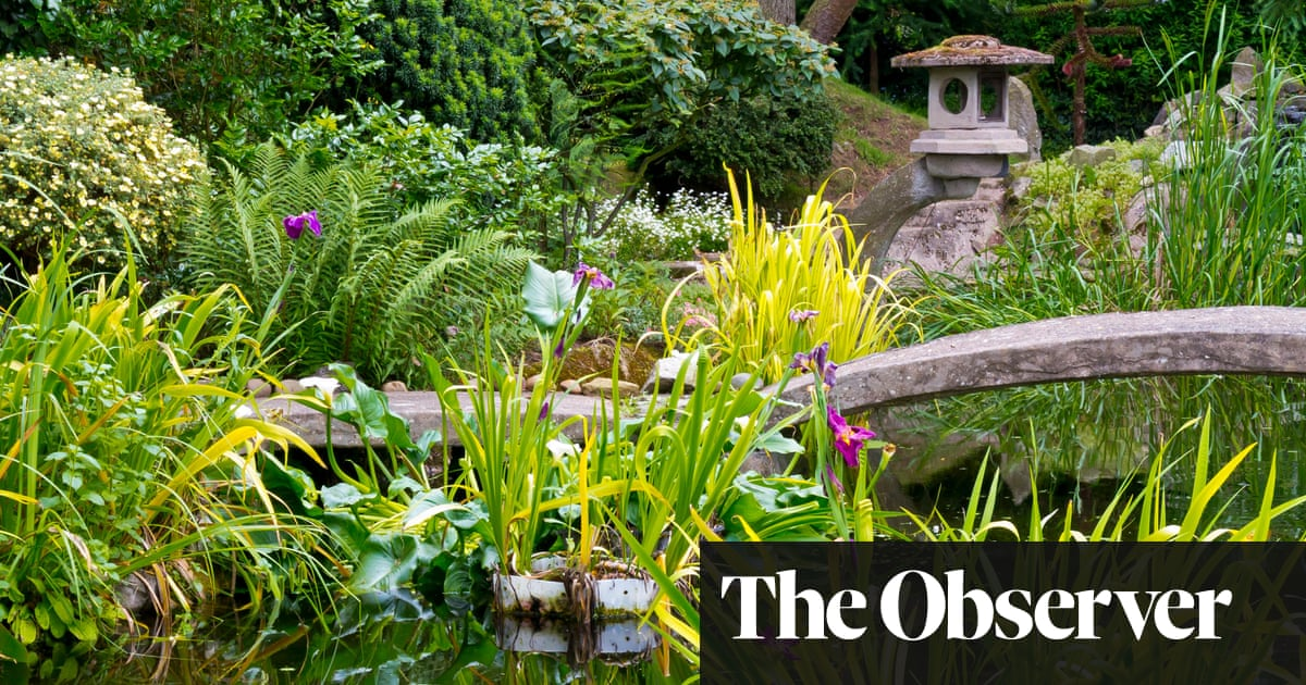 To rethink your garden, learn Japanese