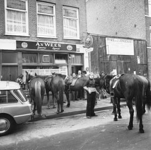 Horses tethered outside a café