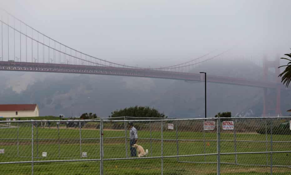 A dog defecates at Crissy Field, the site of the now-cancelled rally.