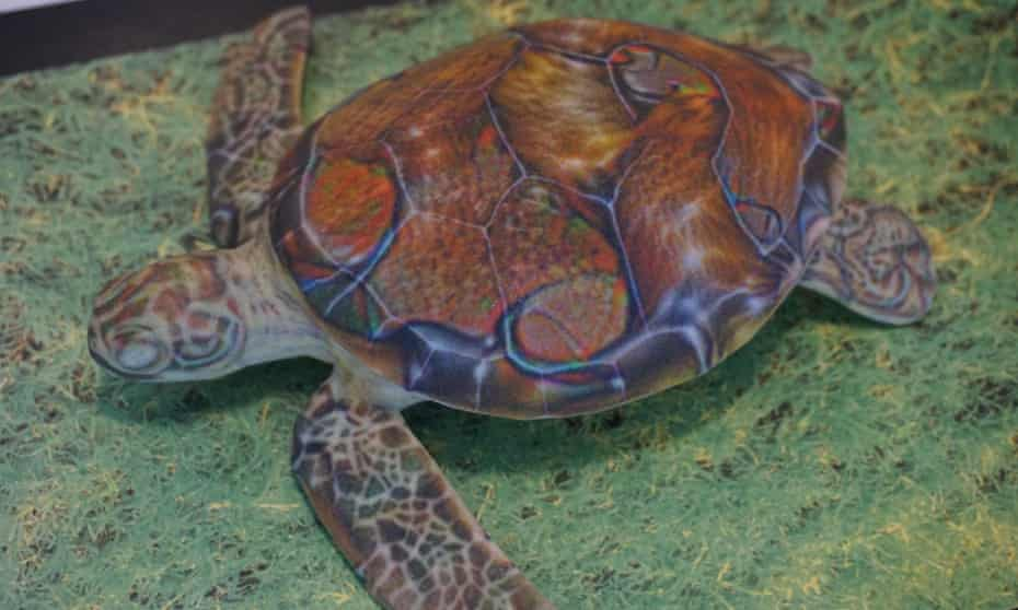 Is it a turtle? Sure – unless you're Google's AI.