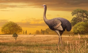 An artist's impression of a giant bird whose bones were found in a Crimean cave