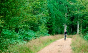 Teenage boy cycling through the New Forest
