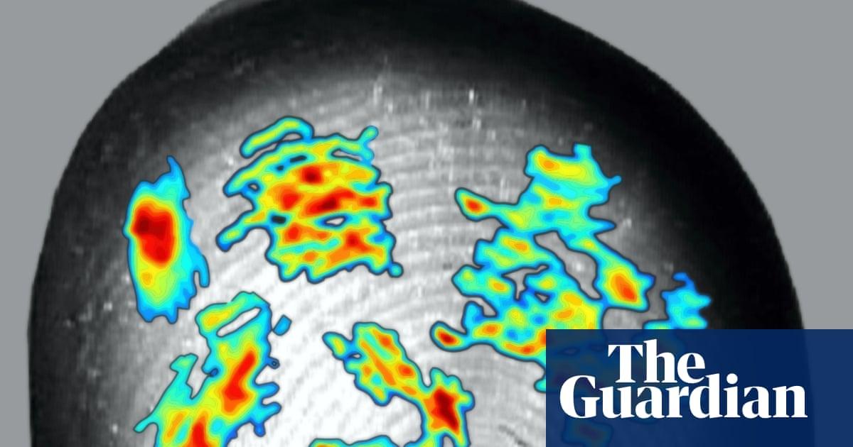 Study sheds light on role of fingerprints in sense of touch