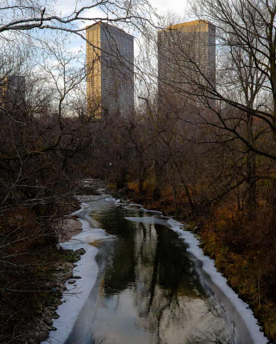 Toronto's ravines are off-limits to the development that has conquered much of the rest of the city.