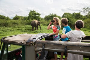 Tourists stand in the back of a 4x4 vehicle and watch a wild elephant in the Minneriya national park in Sri Lanka