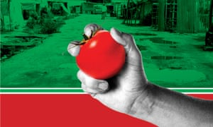 Modern slavery graphic: tomato against shanty town background.