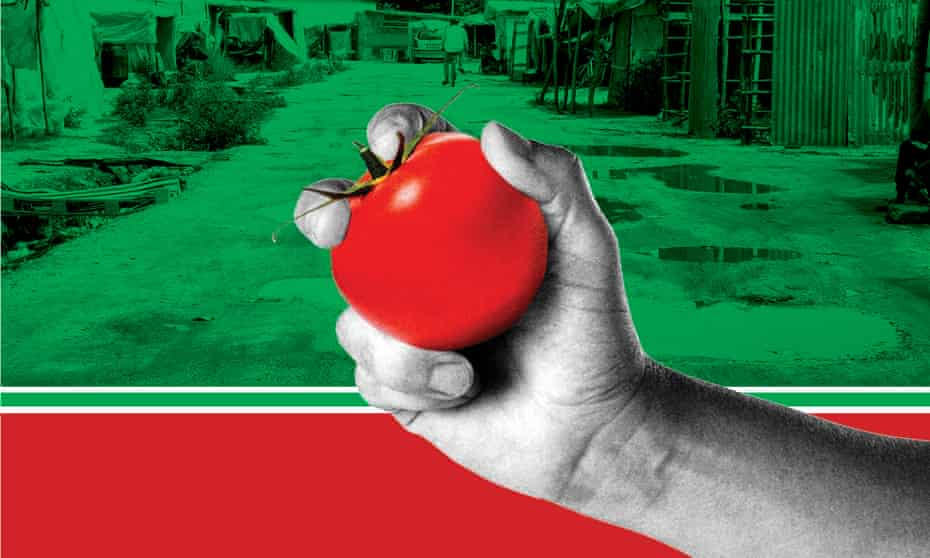 hand holding tomato over image of migrant camp