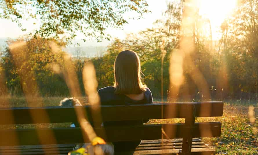 Rear View Of Woman Sitting On Bench In Park During Sunset
