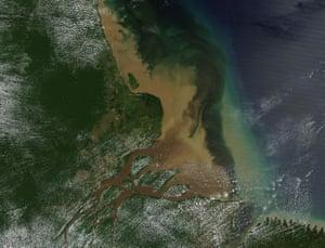 The Amazon River Delta