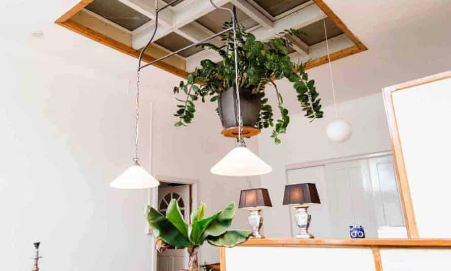 plants and lamps at Inge's Airbnb, a former kindergarten in Haarlem