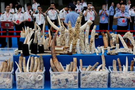 Confiscated ivory items and carvings in Beijing, China.