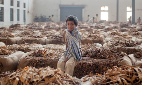 Bitter leaves: tobacco's devastating global legacy